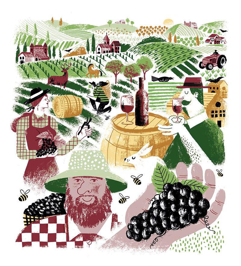 Terre de Vignerons